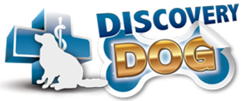 Discovery Dog